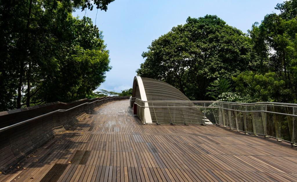 Henderson Wave Ponte Mount Faber